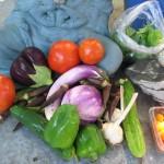 Our garden harvest