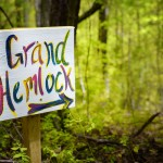 This way to the Grand Hemlock